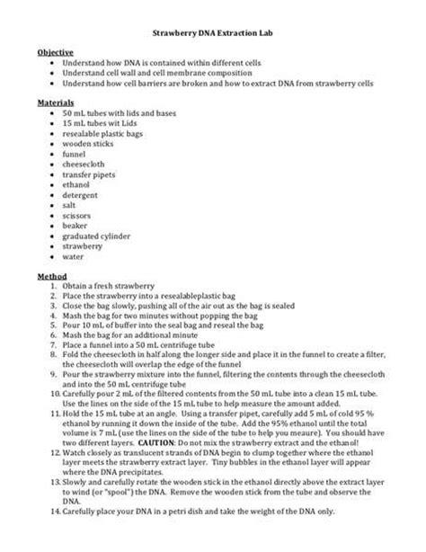 Dna Essay by Dna Fingerprinting Lab Essay Writefiction581 Web Fc2