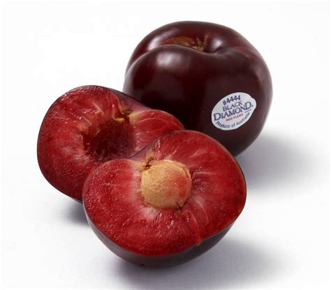 black plums buy from your local fruit shop online buyfruit com au