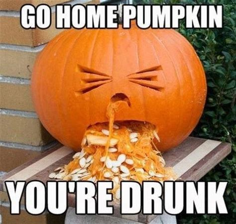Pumpkin Meme - go home pumpkin you re drunk funny pictures