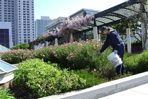 Gardeners Guild by Sustainable Landscaping Gardeners Guild