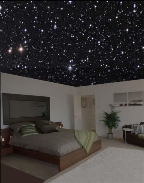 starry bedroom starry night ceiling bedroom pinterest starry nights