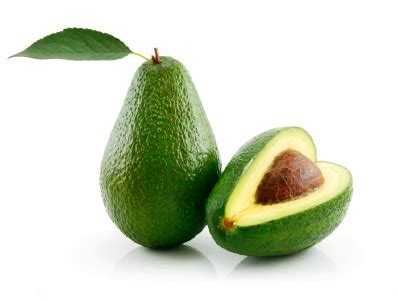 are avocados poisonous to dogs avocados and pets