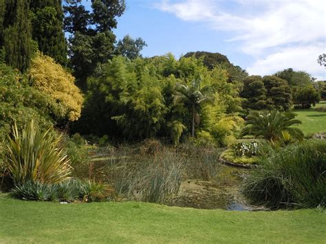 Royal Melbourne Botanical Gardens Royal Botanic Gardens Of Melbourne Melbourne By