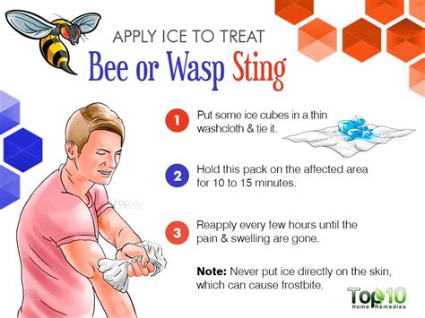 how to treat a bee or wasp sting top 10 home remedies