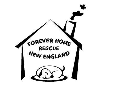 forever home rescue new animal shelters 106