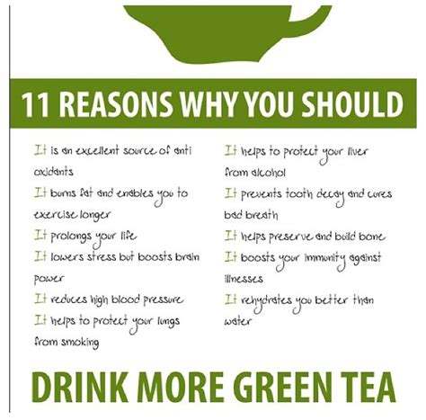 facts about green green tea facts tea or coffee pinterest