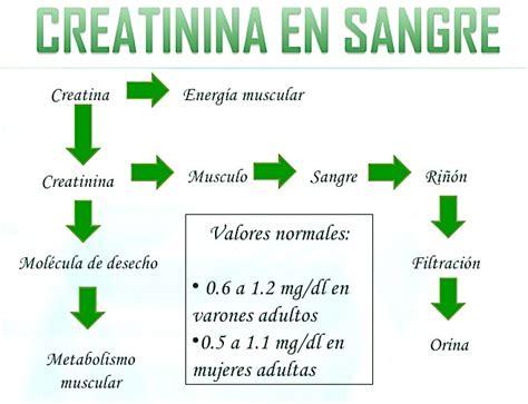 creatinina y creatinina causas de la creatinina demasiada baja de farmacia