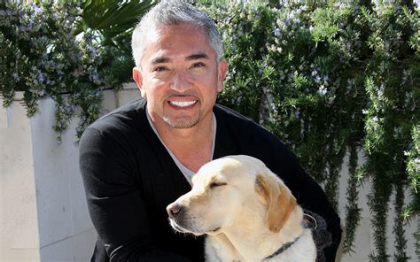 caesar the whisperer join us for a chat with expert cesar millan today at noon et