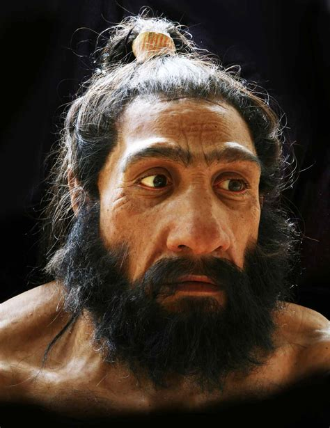 the twilight of the neanderthal anthropology mapping