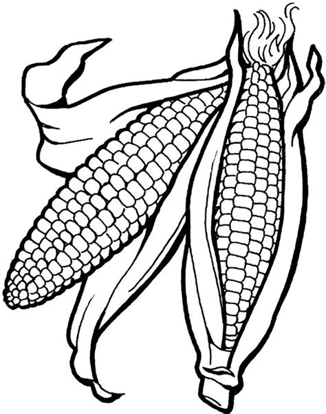 How To Draw An Ear Of Corn