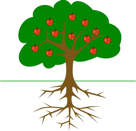 apple tree clipart apple tree with roots clip at clker vector clip
