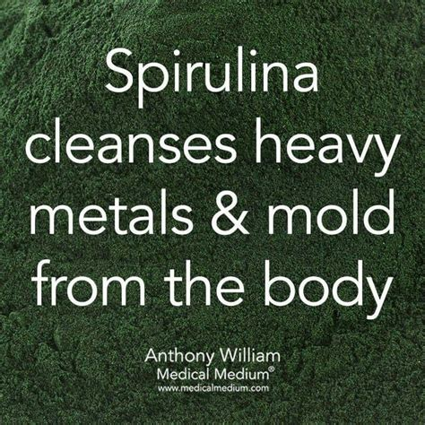 Does Spirulina Detox Heavy Metals by 1003 Best Images About Spirulina On Spirulina