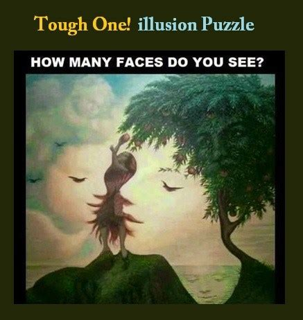 Do You See What I See Part Two by Find Faces In The Pictures Illusion Puzzles