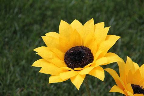 How To Make Sunflower Paper Flowers - crepe paper sunflowers crafty
