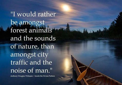 The Forest Would Be A Place Quote Quotes About Forest Animals Quotesgram