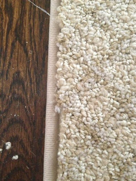 Turn Carpet Into Rug by Best 25 Carpet Remnants Ideas On Rug Binding