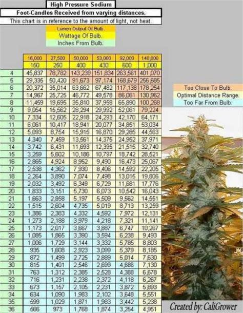 led grow light distance chart curled leaves and yellow tips