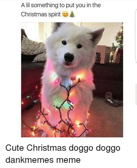 Cute Christmas Meme - 25 best memes about christmas doggo christmas doggo memes