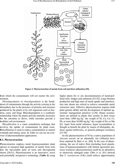 use of bio resources for remediation of soil pollution