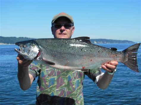 cing boating near me big king salmon charters 24 photos boating 1700 w
