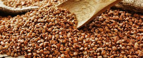 come si cucina il grano il grano saraceno in 5 ricette da provare agrodolce