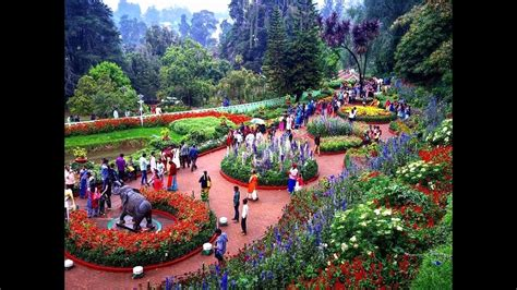 ooty botanical garden images awesome south india triangle