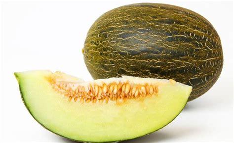 alimentos que no engordan nada diez alimentos que no engordan nada o muy poco qu 233 es