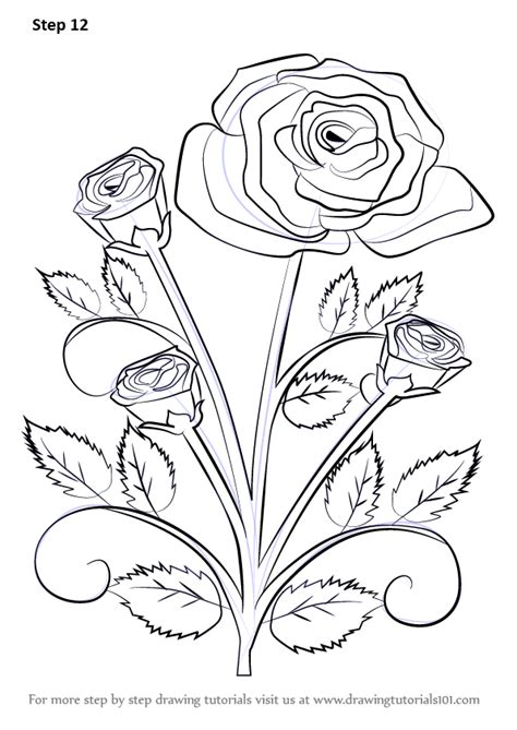 how to draw doodle roses learn how to draw a plant step by step
