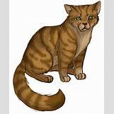Warriors Cats Crookedstar   521 x 627 png 306kB