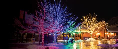 Lovely Much Does Christmas Light Installation Cost #6: Fancy-Landscape-Christmas-Lights-F91-On-Stylish-Image-Collection-with-Landscape-Christmas-Lights.jpg