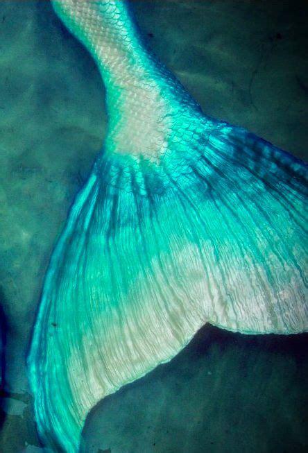 the blue light tale 25 best ideas about mermaid tale on mermaid