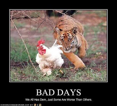 tough day funny quotes