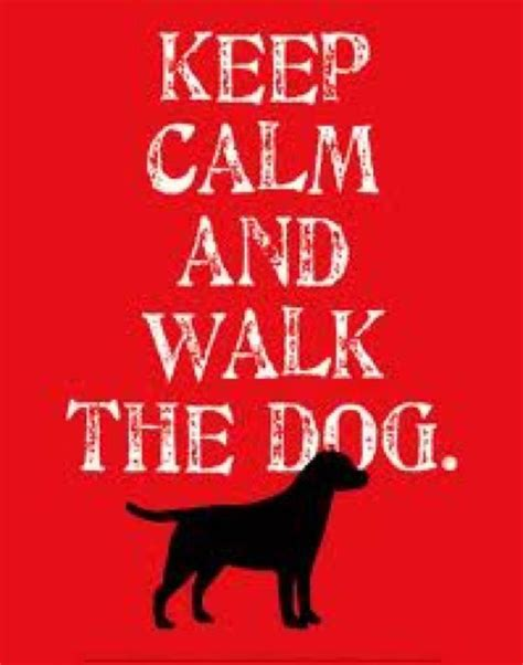 keep calm and puppies keep calm and walk the dogs el grande pics