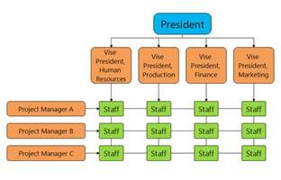 Free Organizational Chart Template For Mac by Organisation Chart Travel Agency Software Matrix