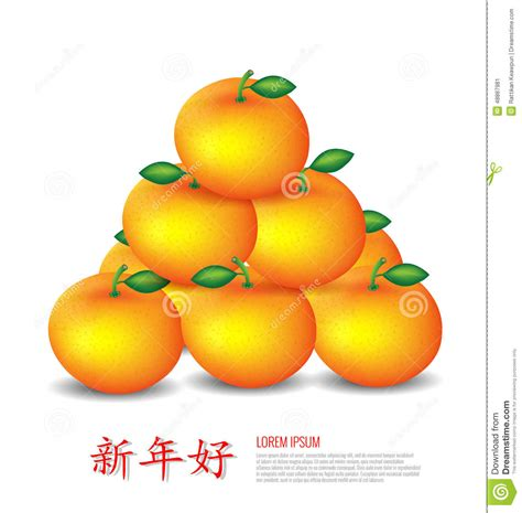 orange meaning in new year new year mandarin oranges stock vector