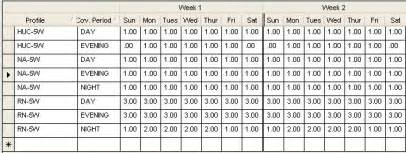 staffing profile template additional needs based scheduling set up