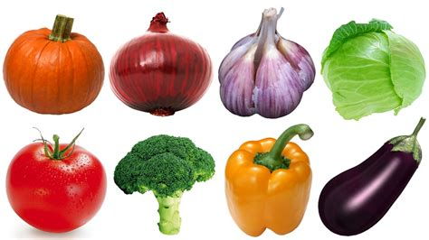 vegetables for vegetables for www pixshark images galleries