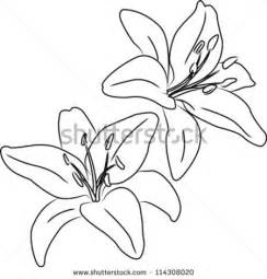 Flowers Drawings Outlines by 25 Great Ideas About Flower Outline On Simple