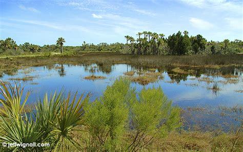 merritt island national wildlife refuge titusville flori