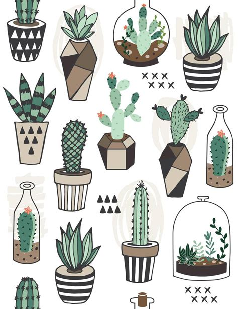 cactus doodle inspiring cactus photographs and illustrations on fotolia