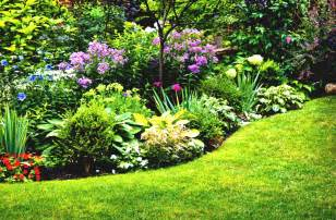 simple flower garden ideas sun for your back yard