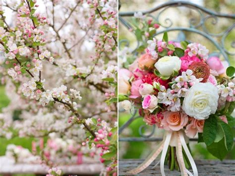 Wedding Bouquet Crabapple Tree by Dreamy Blush Pink And Downy White Crab Apple Blossom