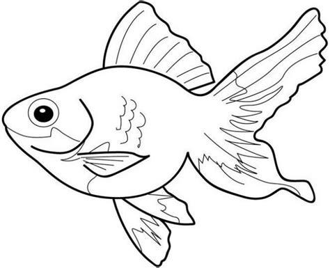 imagenes animales vertebrados para colorear dibujos para colorear de animales vertebrados de distintos