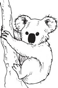 koala 233 seau canop 233 direction territoriale acad 233 mies besan 231 dijon