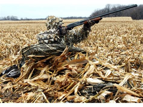 ultimate layout blind assembly beavertail sniper layout blind 600d fabric swer camo