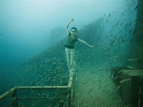underwater photography exhibition in florida video