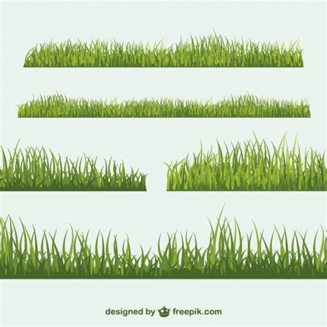 grass section grass collection vector free download