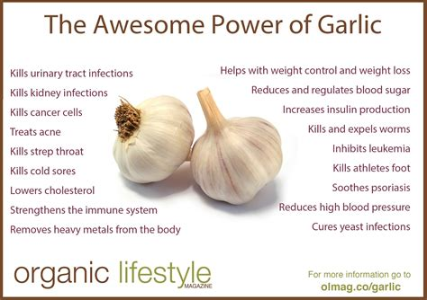 ate garlic 10 amazing benefits of garlic on an empty stomach