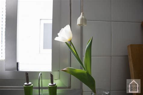 home staging piso alquiler logro 241 o