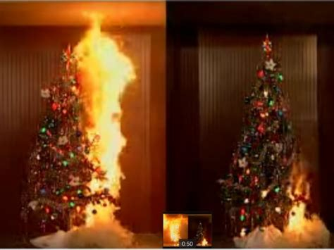 fire that killed 7 reminder of live christmas tree hazard